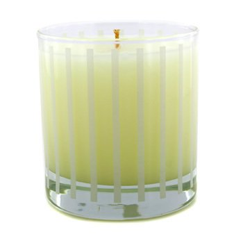 Fragrance Candle - Apple Wood  227g/8oz