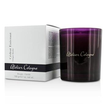 Bougie Candle - Cedrat Enivrant  190g/6.7oz
