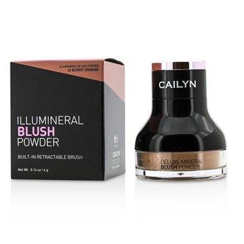 Cailyn Illumineral Blush Powder - #02 Burnt Orange  4g/0.14oz