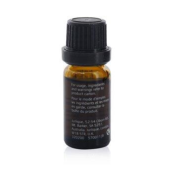 Bergamot Pure Essential Oil  10ml/0.33oz