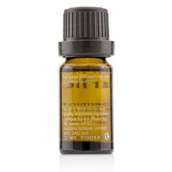 Peppermint Pure Essential Oil  10ml/0.35oz