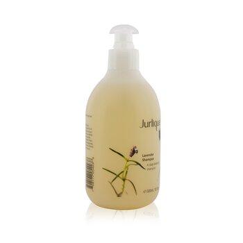 Lavender Shampoo  300ml/10.1oz