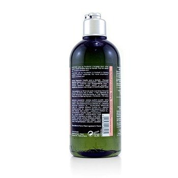 Aromachologie Repairing Shampoo (Dry & Damaged Hair)  300ml/10.1oz