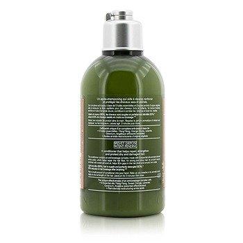 Aromachologie Repairing Conditioner (Dry & Damaged Hair)  250ml/8.4oz