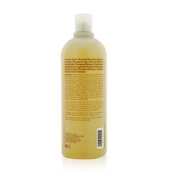 滋養平衡 洗髮露 (健康秀髮基礎)  1000ml/33.8oz