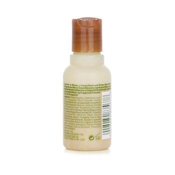 Ružmarin metvica sapun za ruke i tijelo  50ml/1.7oz