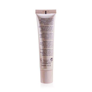 Teint Divin Mineral Tinted Moisturizer - Light to Medium Skin  30ml/1oz