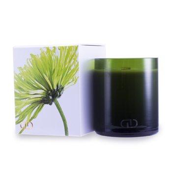 DayNa Decker Multizmyslová sviečka Botanika s ekologickým knôtom – Maja  170g/6oz