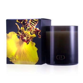 DayNa Decker Exotic Multisensory Candle with Ecowood Wick - Laini  170g/6oz