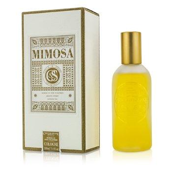 Czech & Speake Mimosa kolonjski sprej  100ml/3.4oz