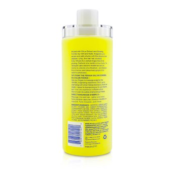Full Blown Volume Shampoo (Amplifies & Invigorates)  473ml/16oz