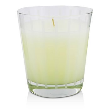 Fragrance Candle - Orange Ginger  250g/8.8oz