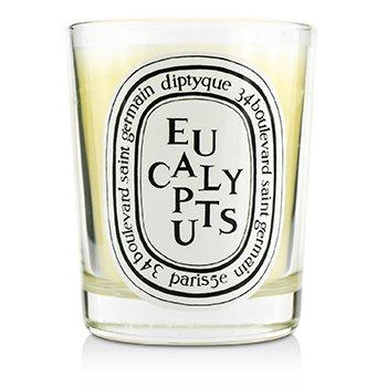 尤加利 香氛蠟燭 Scented Candle - Eucalyptus  190g/6.5oz