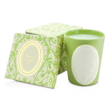 Laduree Scented Candle - Amandine  220g/7.76oz