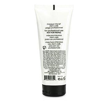 Stem Cells Phyto-Elite Intensive Mask (Salon Product)  200ml/6.8oz
