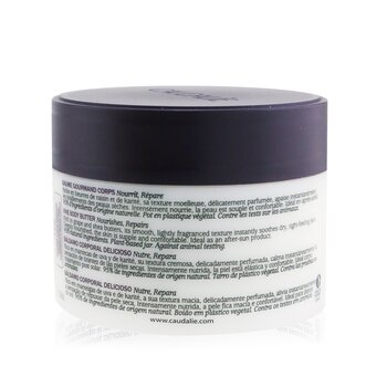 Vine Body Butter (Jar)  225ml/7.6oz