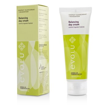 Balancing Day Cream (Normal or Combination Skin)  75ml/2.6oz