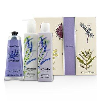 Crabtree & Evelyn Lavender Essentials Set: Gel Baño & Ducha 250ml + Loción Corporal 245ml + Ultra-Moisturising Hand Therapy 100g  3pcs