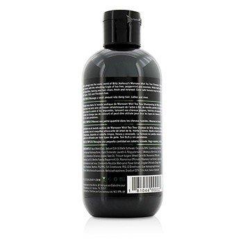 Monsoon Mist Tea Tree Shampoo (Energizing Cleanser)  236ml/8oz