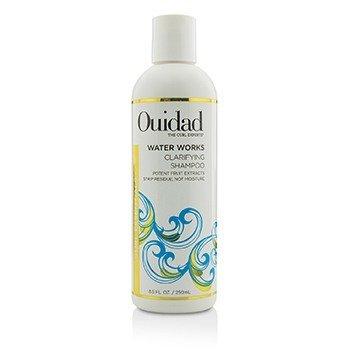 Water Works Clarifying Shampoo (Curl Essentials)  250ml/8.5oz