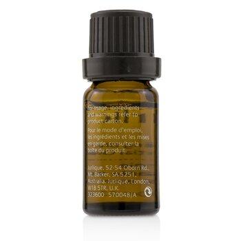 Calming Blend Essential Oil  10ml/0.33oz