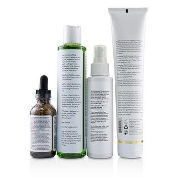 護髮大師四步驟組- 不含防腐劑配方(所有髮質適用)  4pcs