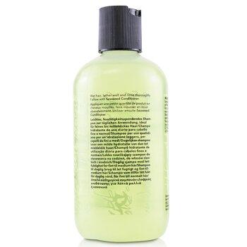 Bb. Seaweed Shampoo (Fine to Medium Hair)  250ml/8.5oz