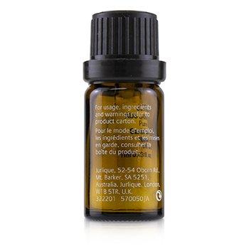 Australian Sandalwood Pure Essential Oil 1ml/0.03oz