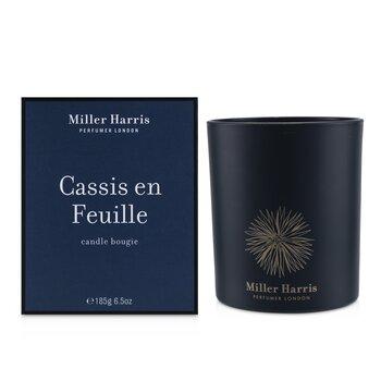 Candle - Cassis En Feuille  185g/6.5oz