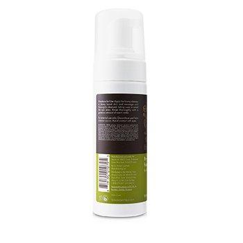 Re-Fresh Foaming Cleanser  150ml/5oz