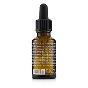 Antioxidant + Facial Oil - Borago, Rosehip & Buckthorn  25ml/0.84oz