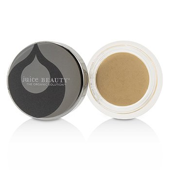 Phyto Pigments Perfecting Concealer  5.5g/0.19oz