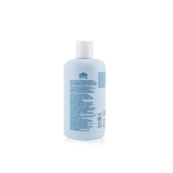 Anti-Frizz Mask (Ultra-Conditioning For Longer-Lasting, Frizz-Free and Silky Hair)  500ml/16.9oz