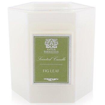 Candle - Fig Leaf  255g/9oz
