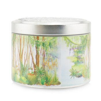 100% Beeswax Tin Candle - Tropical Forest  (8x6) cm