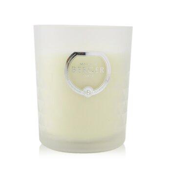 Scented Candle - Precious Jasmine  170g/5.9oz