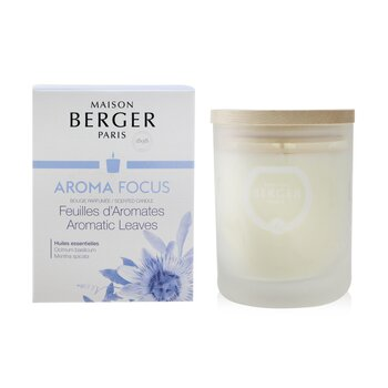 Scented Candle - Aroma Focus  Scented Candle