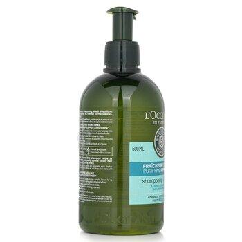 Aromachologie Purifying Freshness Shampoo (Normal to Oily Hair)  500ml/16.9oz