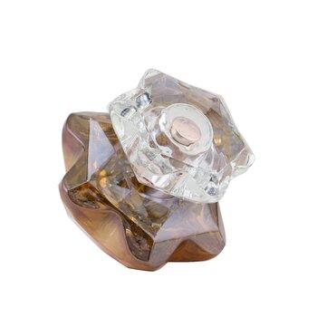 Lady Emblem Elixir Парфюмированная Вода Спрей  50ml/1.7oz