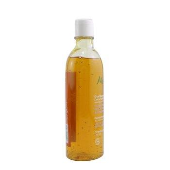 Gentle Purifying Shampoo (Oily Hair)  200ml/6.7oz