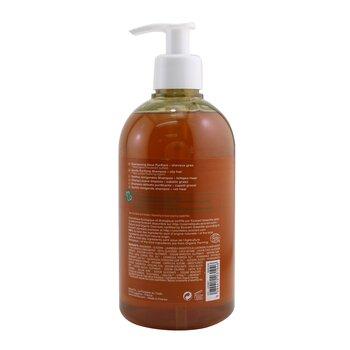 Gentle Purifying Shampoo (Oily Hair)  500ml/16.9oz